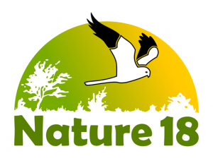 Nature-18-logo-blanc-transparent