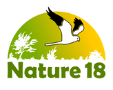 Nature 18