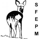 Logo_sfepm