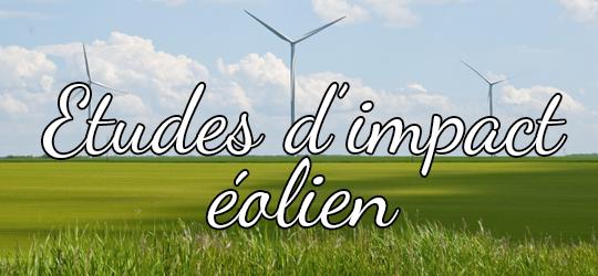 Tuile_clé04_Etudes -impact