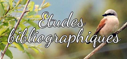 Tuile07_Competences_Etudes-biblio